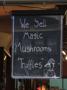 Magic Mushrooms...