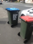 Bring out your dead! Bin in Auckland.