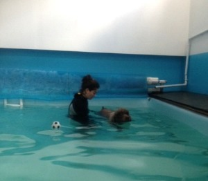 Well, you are meant to be a water dog, Alice!